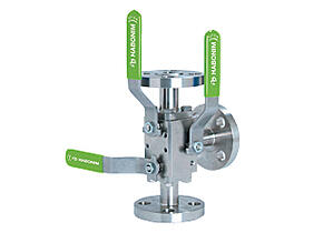 Habonim Dual-Safe (DBB) valve